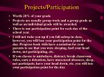 projects participation