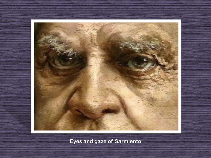 Eyes and gaze of Sarmiento