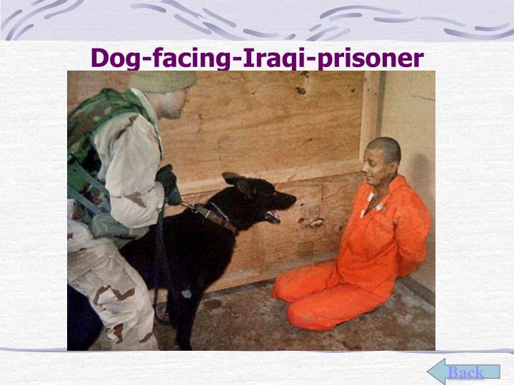 Dog-facing-Iraqi-prisoner
