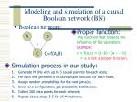 modeling and simulation of a causal boolean network bn