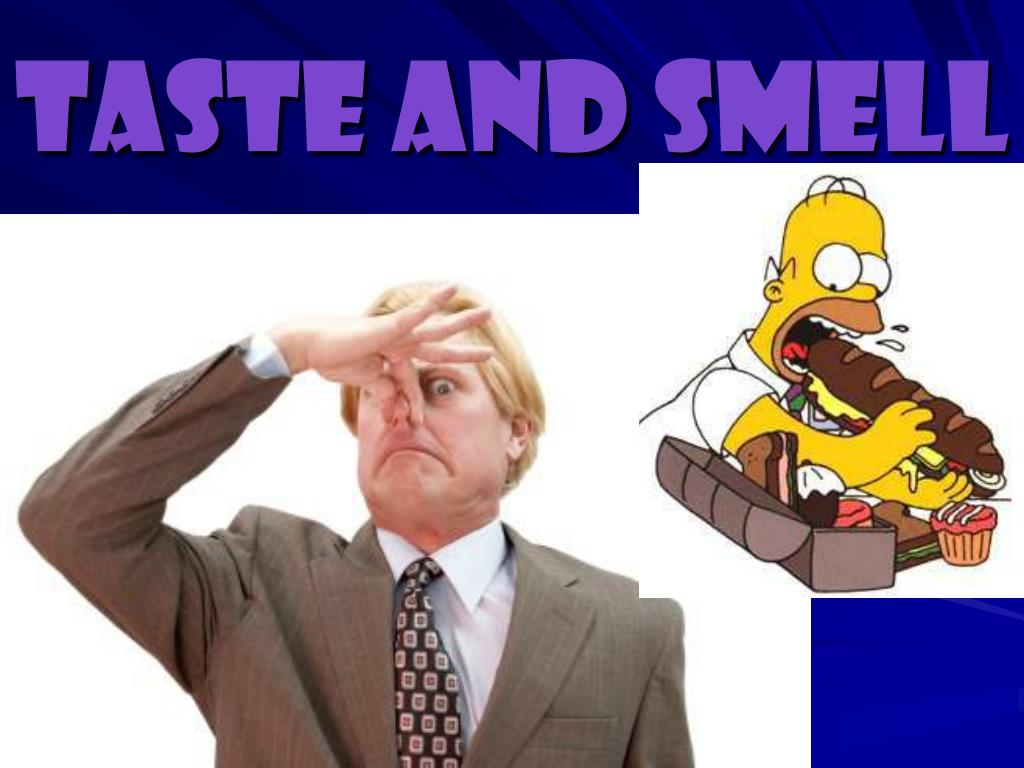 PPT - Taste and Smell PowerPoint Presentation - ID:6035505