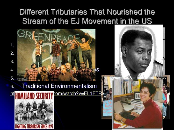 Different Tributaries That Nourished the Stream of the EJ Movement in the US