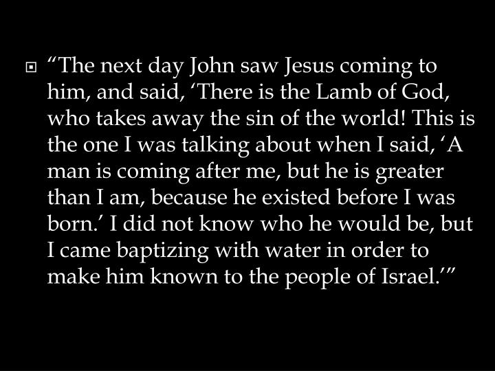 """The next day John saw Jesus coming to him, and said, 'There is the Lamb of God, who takes away ..."