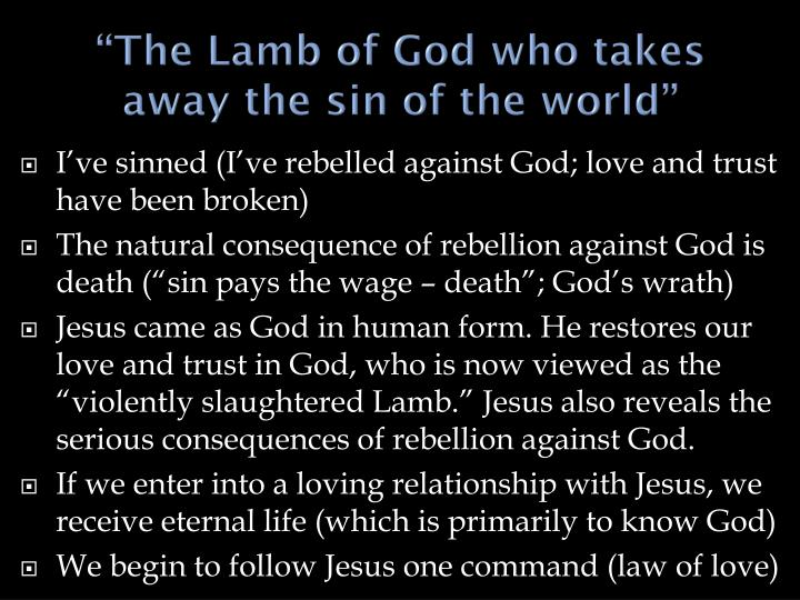 """The Lamb of God who takes away the sin of the world"""