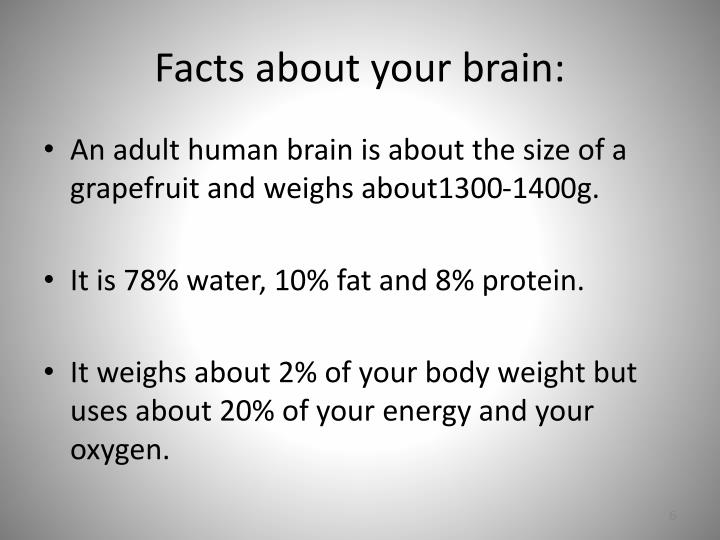 Facts about your brain: