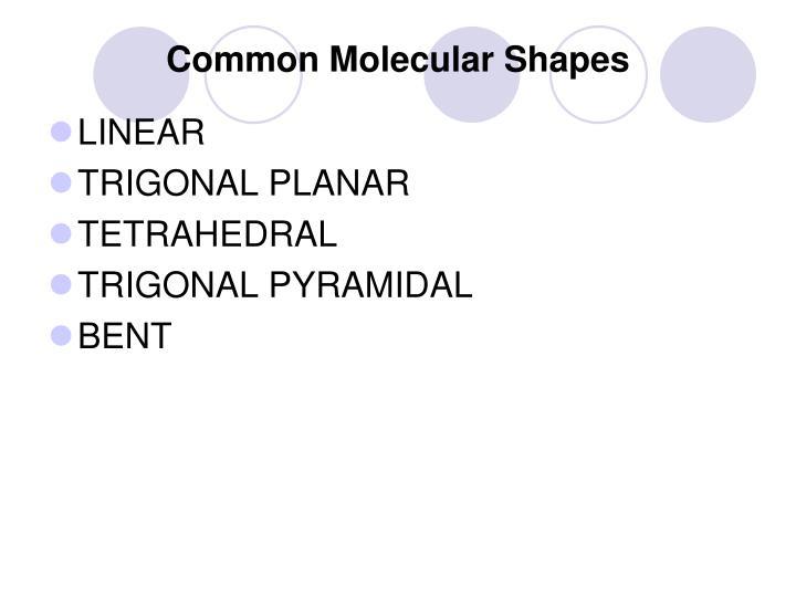 Common Molecular Shapes