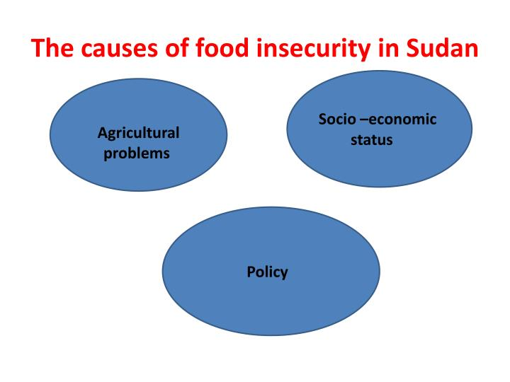 The causes of food insecurity in Sudan