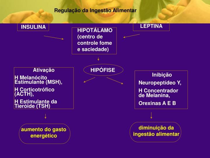 Regulação da Ingestão Alimentar