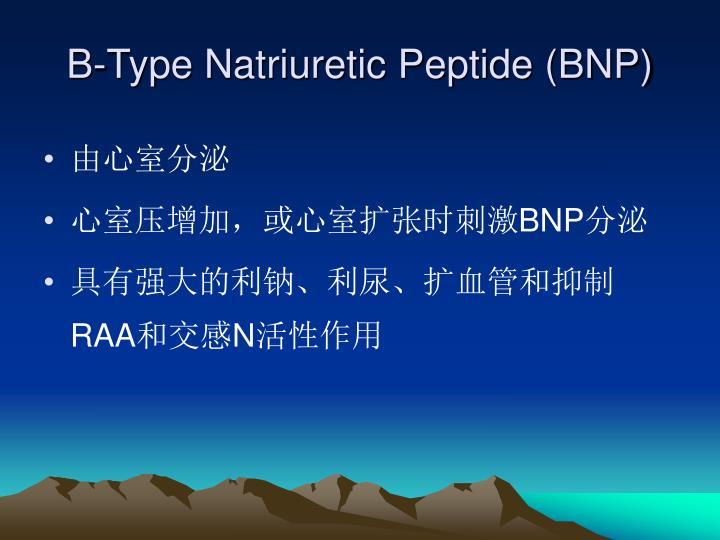 B-Type Natriuretic Peptide (BNP)