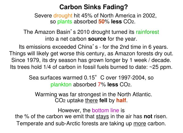 Carbon Sinks Fading?