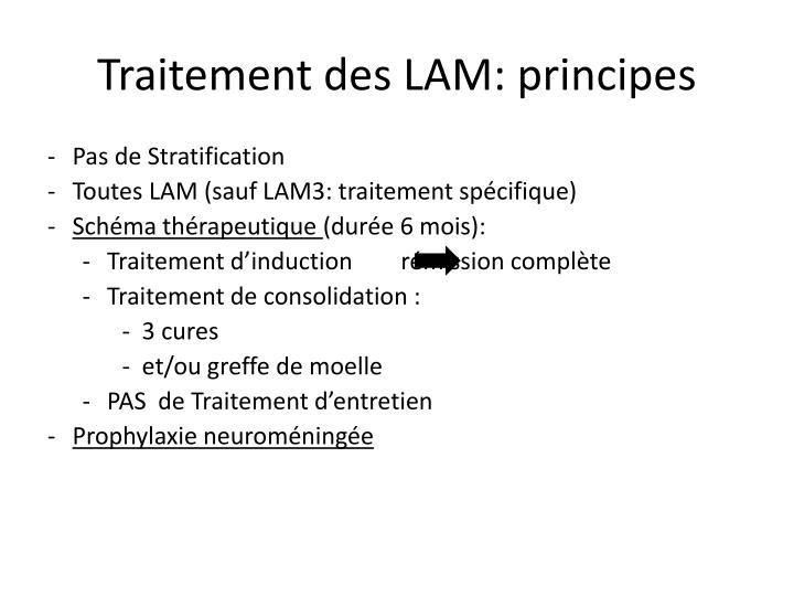 Traitement des LAM: principes