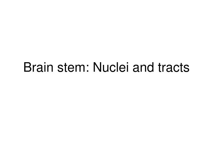 brain stem nuclei and tracts n.