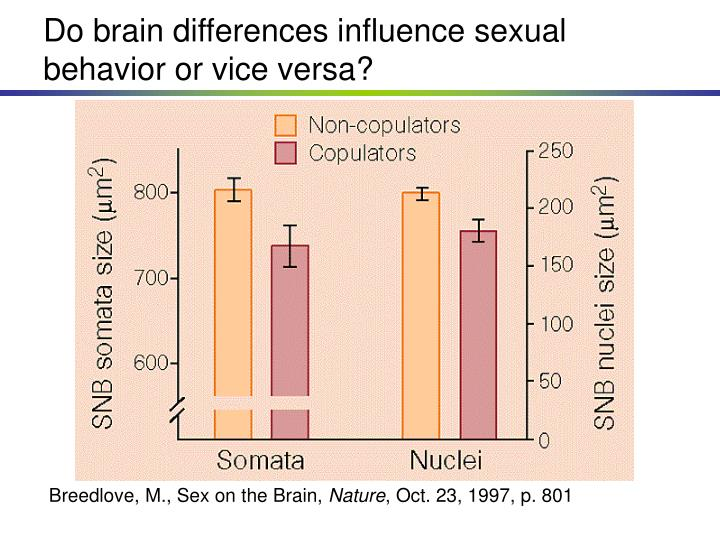 Do brain differences influence sexual behavior or vice versa?