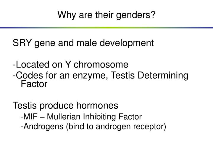 Why are their genders?