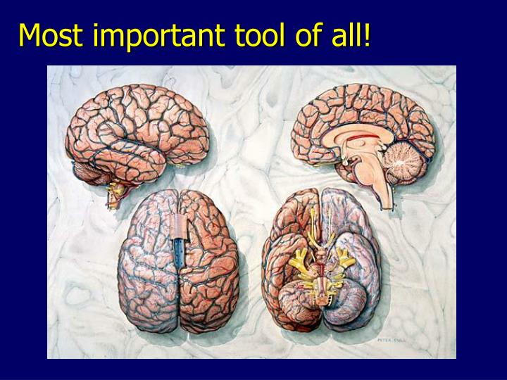 Most important tool of all!