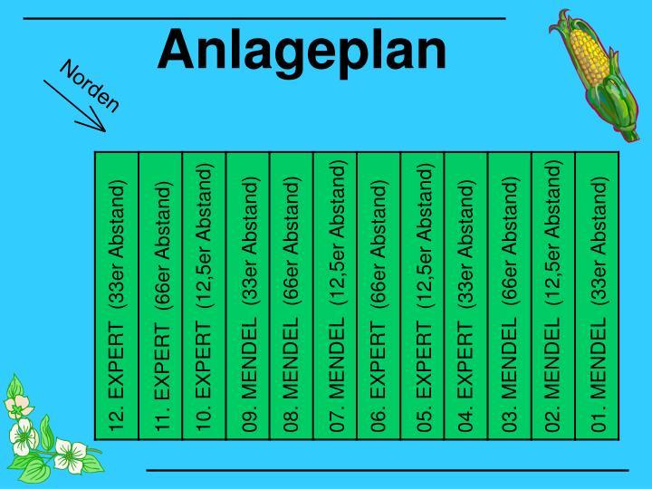 Anlageplan