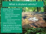 what is dryland salinity