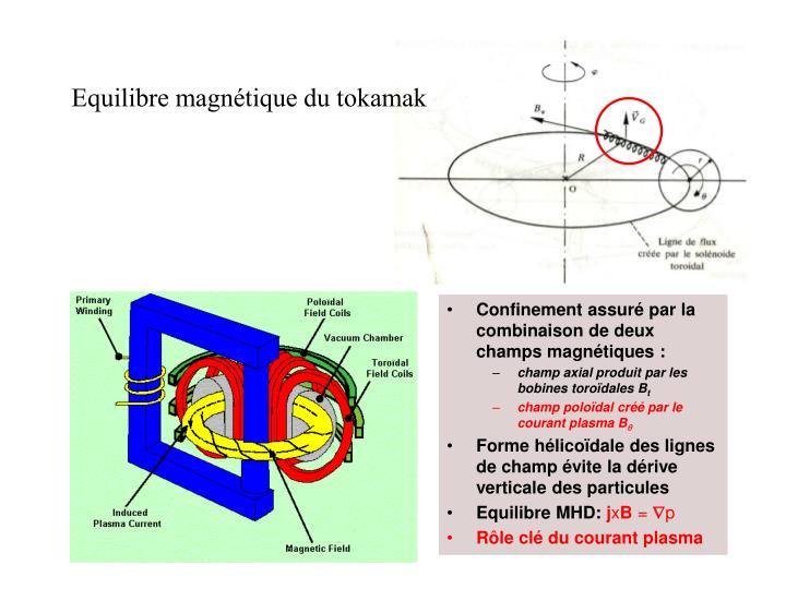 Equilibre magnétique du tokamak