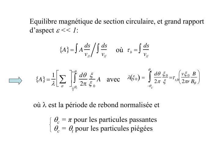 Equilibre magnétique de section circulaire, et grand rapport d'aspect