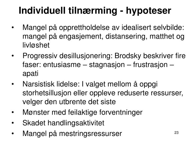 Individuell tilnærming - hypoteser