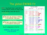 the global ewwg fit