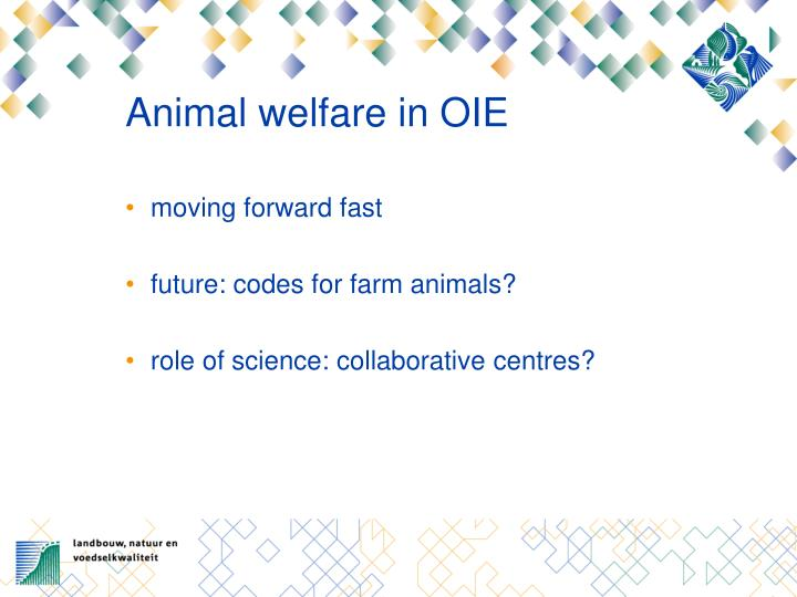 Animal welfare in OIE