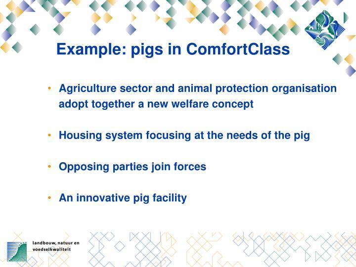 Example: pigs in ComfortClass