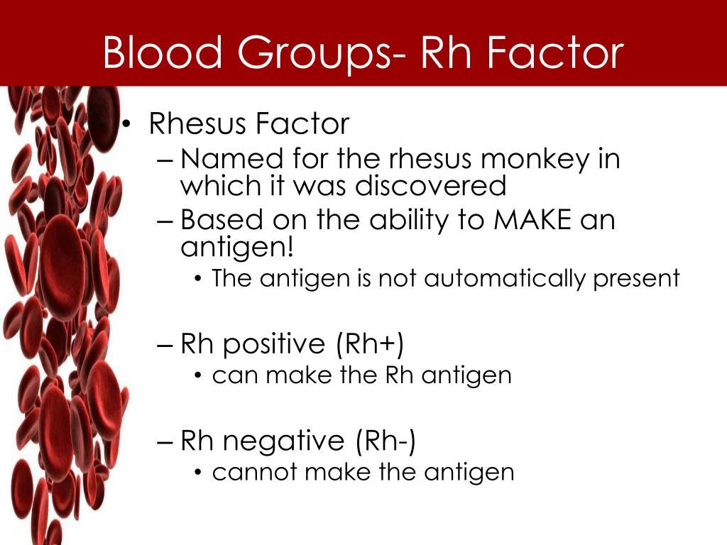 PPT - Circulatory System PowerPoint Presentation - ID:6045653