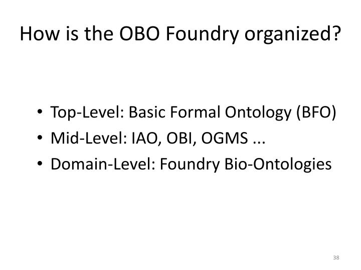 How is the OBO Foundry organized?