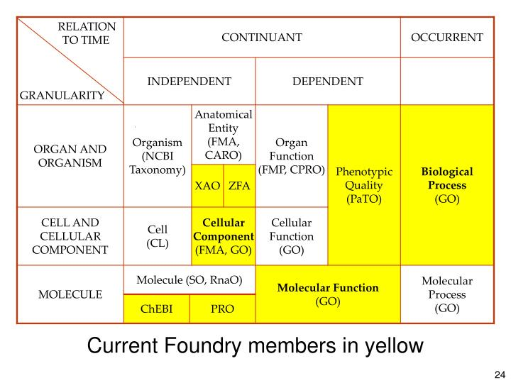 Current Foundry members in yellow