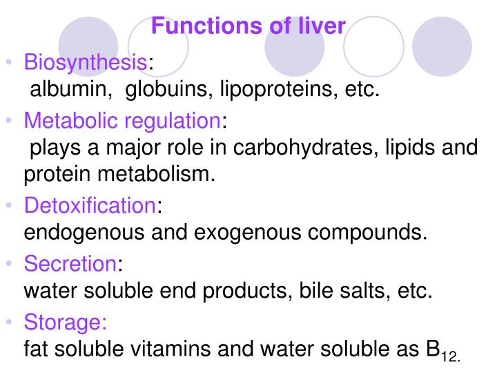 Ppt Assessment Of Liver Function Powerpoint Presentation Id6046024