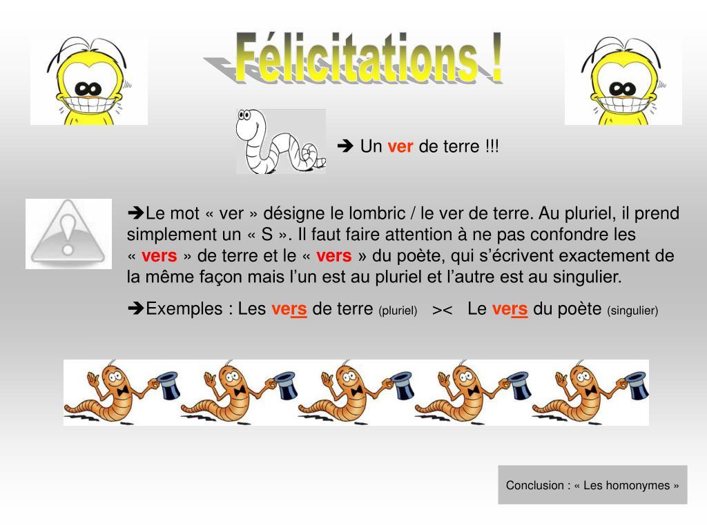 PPT - Les homonymes grammaticaux PowerPoint Presentation ...