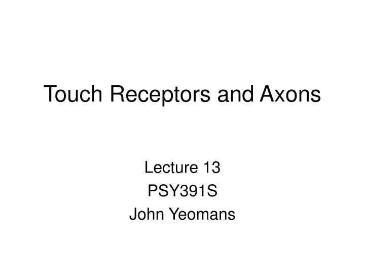 touch receptors and axons n.