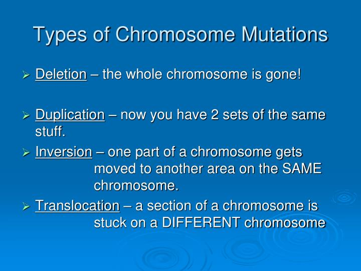 Types of Chromosome Mutations
