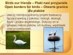 birds our friends ptaki nasi przyjaciele open borders for birds otwarte granice dla ptak w