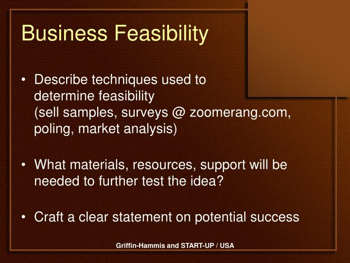 Business Feasibility