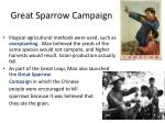 great sparrow campaign2