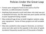 policies under the great leap forward