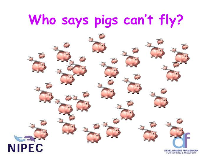 Who says pigs can't fly?