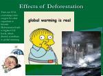 effects of deforestation3