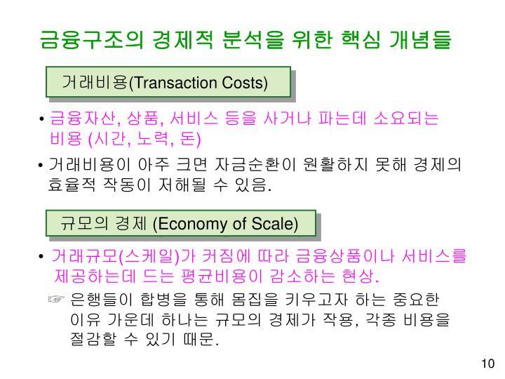 금융구조의 경제적 분석을 위한 핵심 개념들