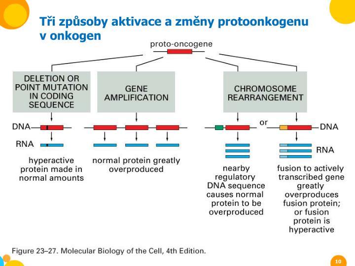 Tři způsoby aktivace a změny protoonkogenu v