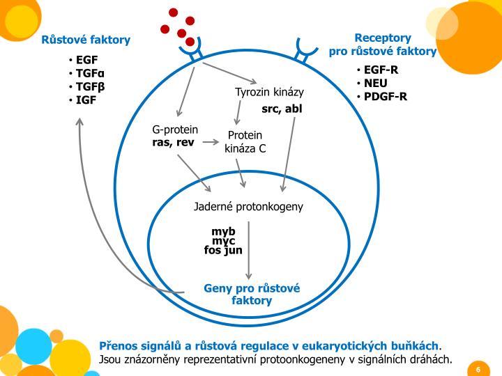 Receptory