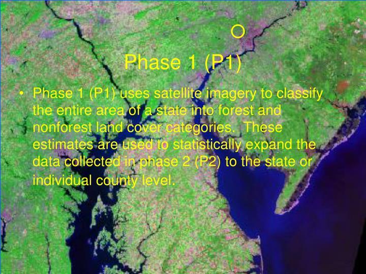 Phase 1 (P1)