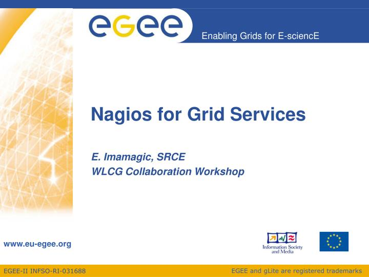Nagios for grid services