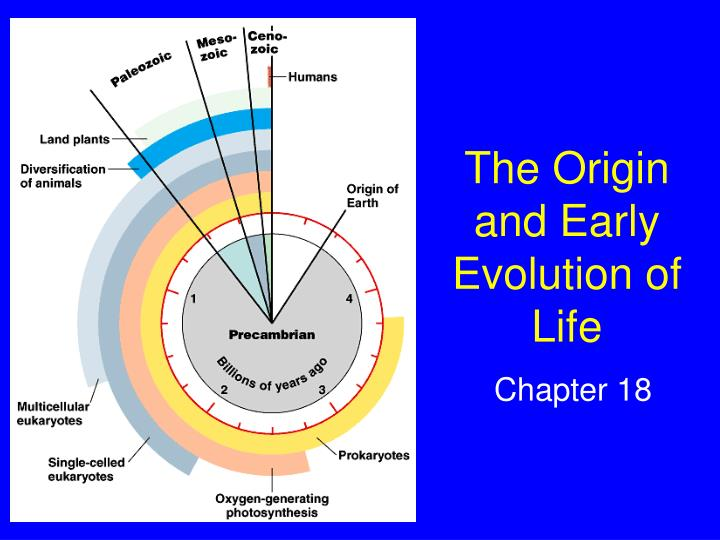 the origin and early evolution of life n.