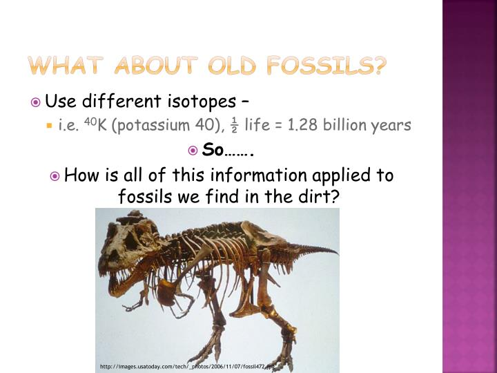 What about old fossils?