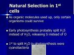 natural selection in 1 st cells