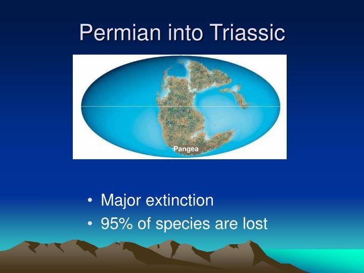 Permian into Triassic