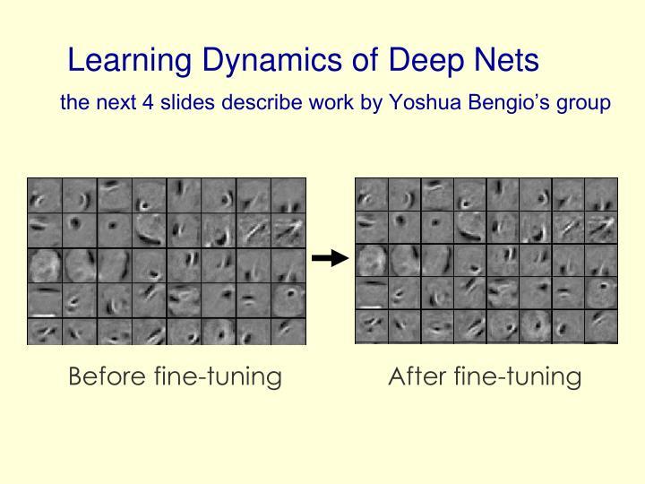 Learning Dynamics of Deep Nets